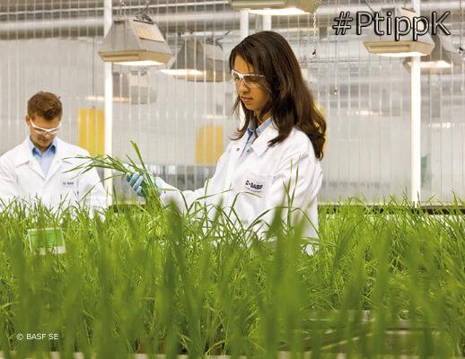 Pflanzenschutz der Zukunft / The future of crop protection