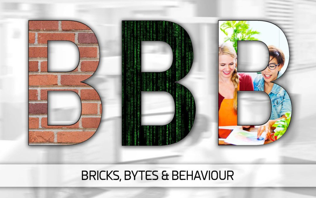 Bricks Bytes Behaviour